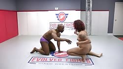 Evolved Fights Daisy Ducati Vs Will Tile